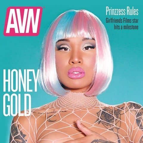 AVN cover
