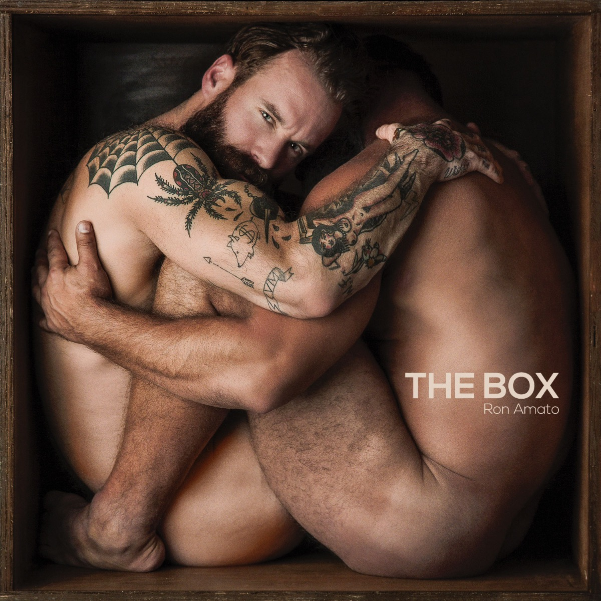 The Box by Ron Amato